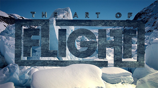 The Art of Flight - snowboard movie
